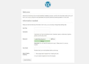 how to install wordpress website details input
