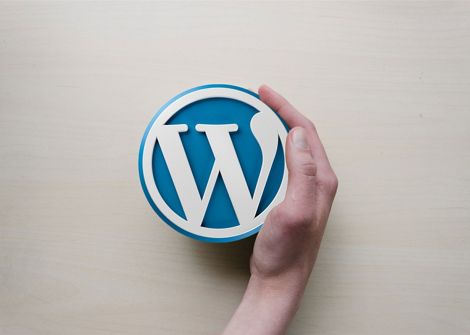 What is WordPress and How it Works